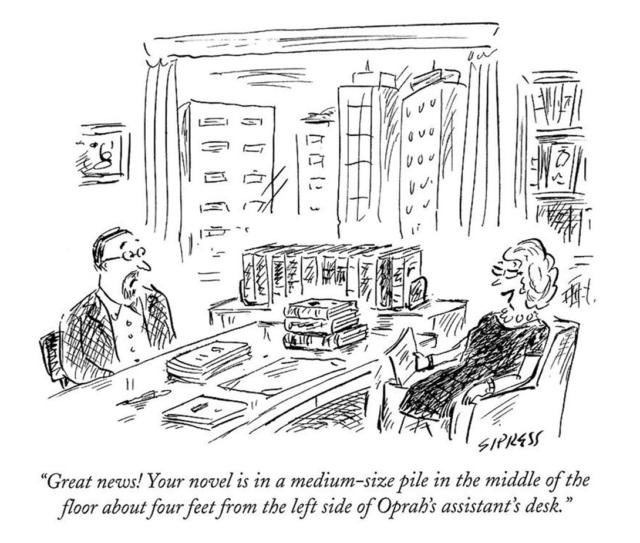 Judy Goldman - How to Get an Agent